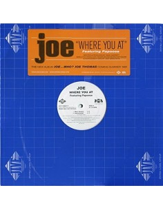 "VINILO MX JOE FEAT. PAPOOSE ""wHERE YOU AT"""