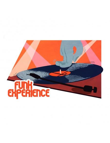"""Pegatina R de Rumba """"FUNK EXPERIENCE"""" en vinilo"""