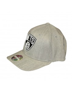 Gorra MITCHELL & NESS BROOKLYN NETS GRIS