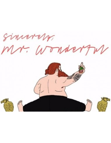 "VINILO LP ACTION BRONSON ""MR. WONDERFUL"""